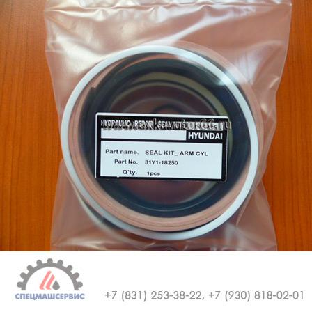 Ремкомплект гидроцилиндра стрелы  HYUNDAI R250LC-7 - 31Y1-09989